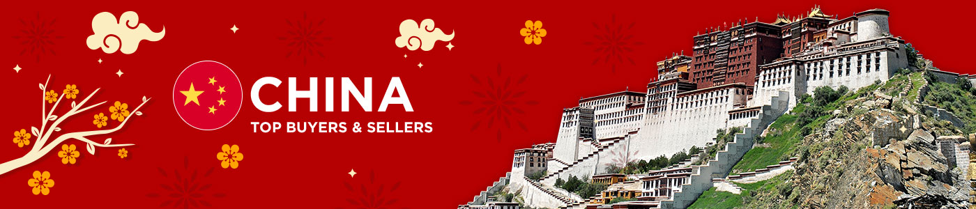 B2B website in China