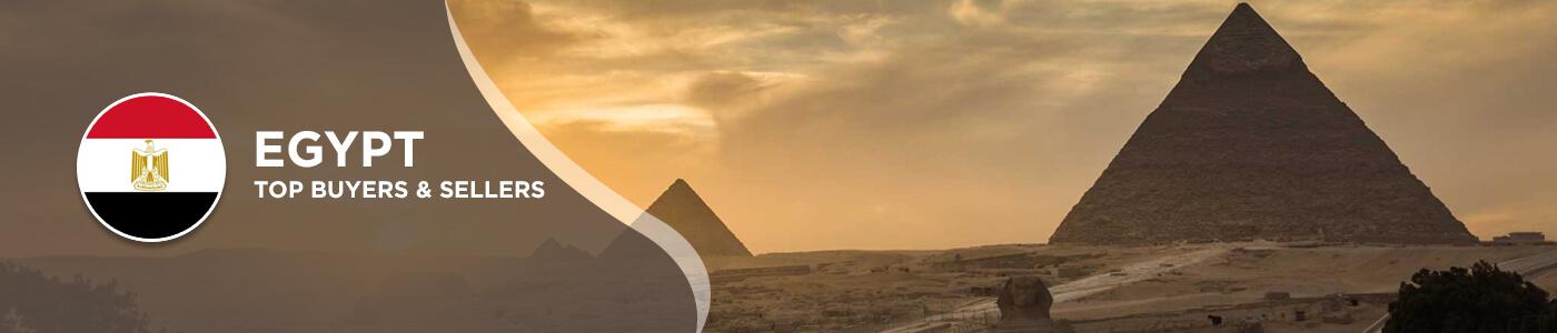 B2B website in Egypt