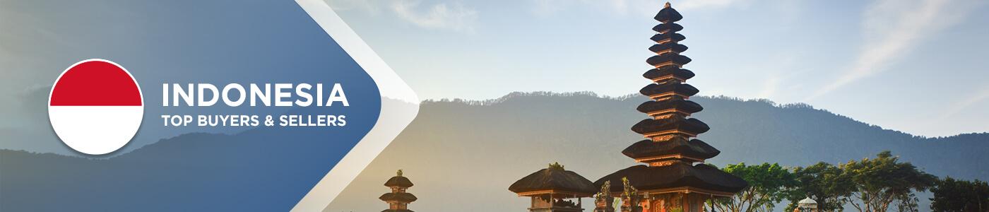 B2B website in Indonesia