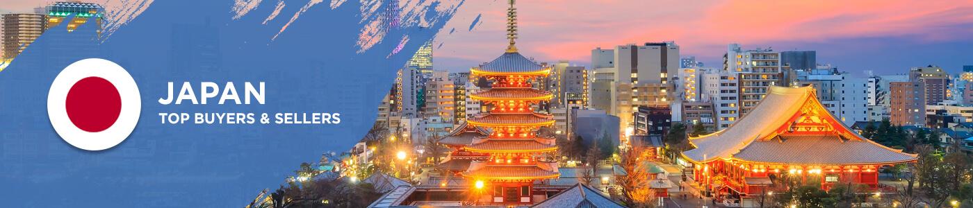 B2B website in Japan