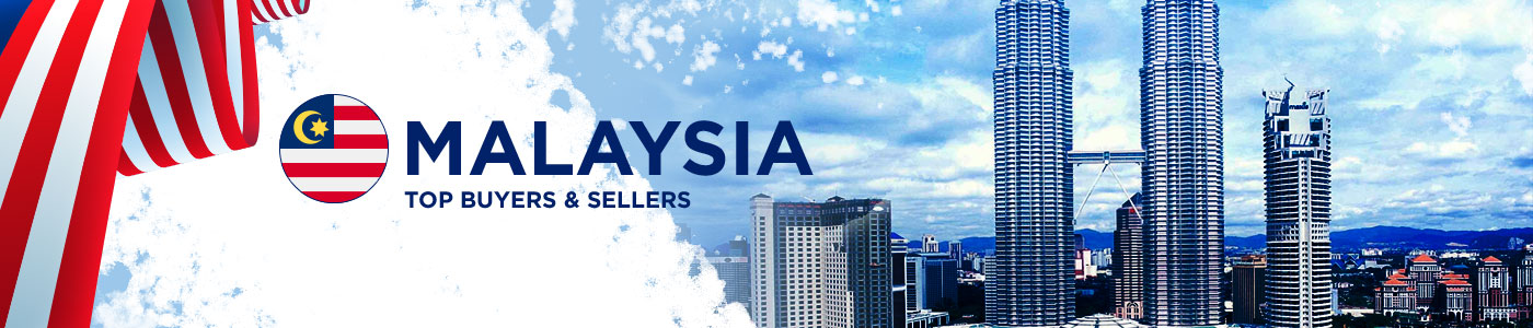 B2B website in Malaysia