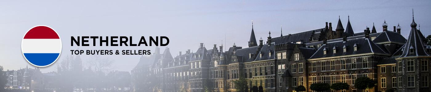 B2B website in Netherlands