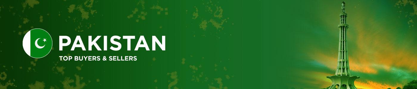 B2B website in Pakistan