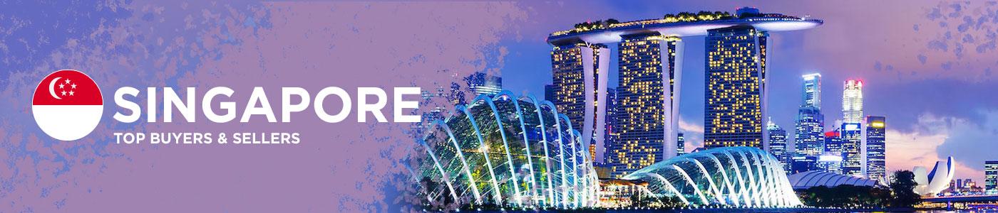 B2B website in Singapore