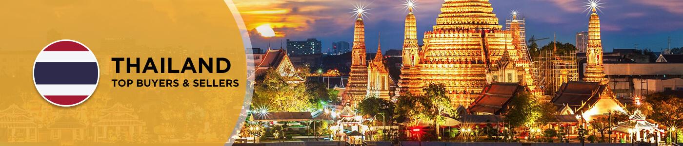 B2B website in Thailand
